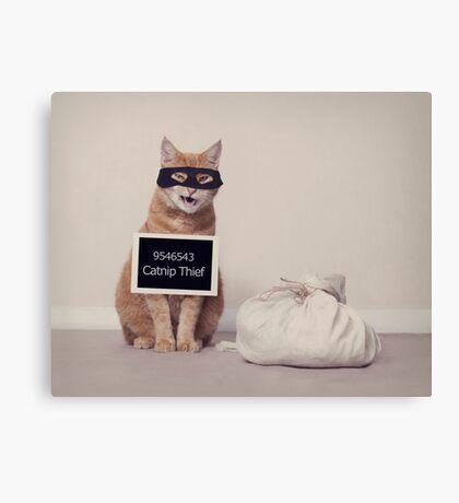 The Catnip Thief Canvas Print