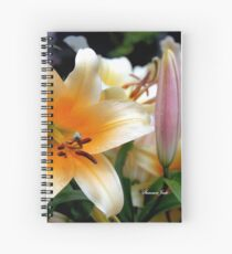 Tequila Sunrise Lily with Raindrops Spiral Notebook