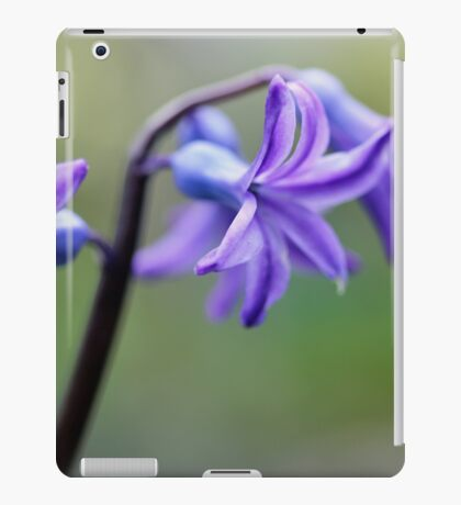 Spring Joy iPad Case/Skin