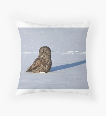 Great Grey Owl casts a long shadow Throw Pillow