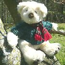 Teddy Bear with Scarf by Vivian Eagleson