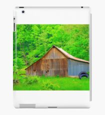 Going Green Country Style iPad Case/Skin