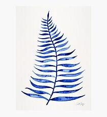 Navy Palm Leaf Photographic Print