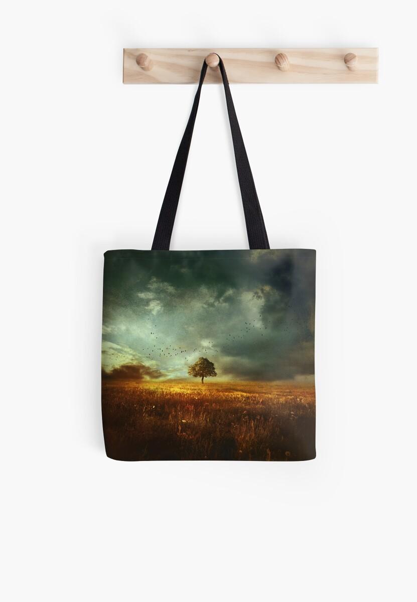 sunset landscape by baxiaart