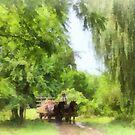Hayride by Susan Savad