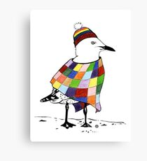 Chilli the Seagull Canvas Print