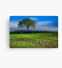 Some Gave All Canvas Print