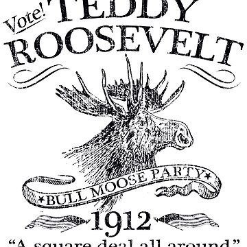 Teddy Roosevelt Bull Moose Party 1912 Presidential Campaign by retrocampaigns