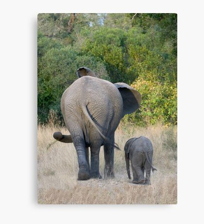 Well Child, Its Like This.... Canvas Print