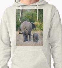 Well Child, Its Like This.... Pullover Hoodie