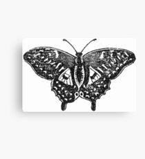 Monochrome Mariposa  Canvas Print