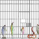 Jail bait by Susan Littlefield