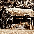 """""""Old Timer's Barn (B&W with a touch of brown)""""... prints and products by Bob Hall©"""