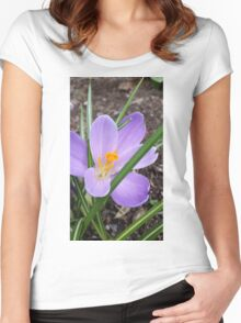 Lavender Crocus Women's Fitted Scoop T-Shirt
