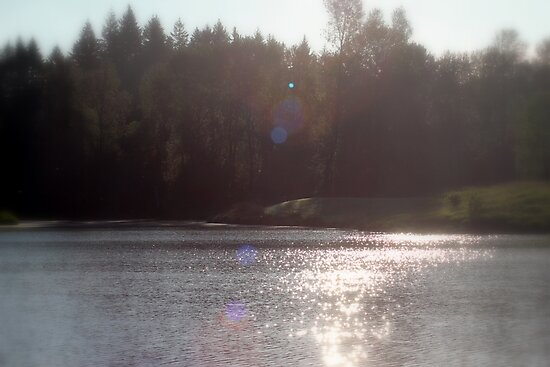 view across Trojan pond, near Goble, Oregon with flare by Dawna Morton