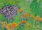 Spring Butterfly (Pastel) by Niki Hilsabeck