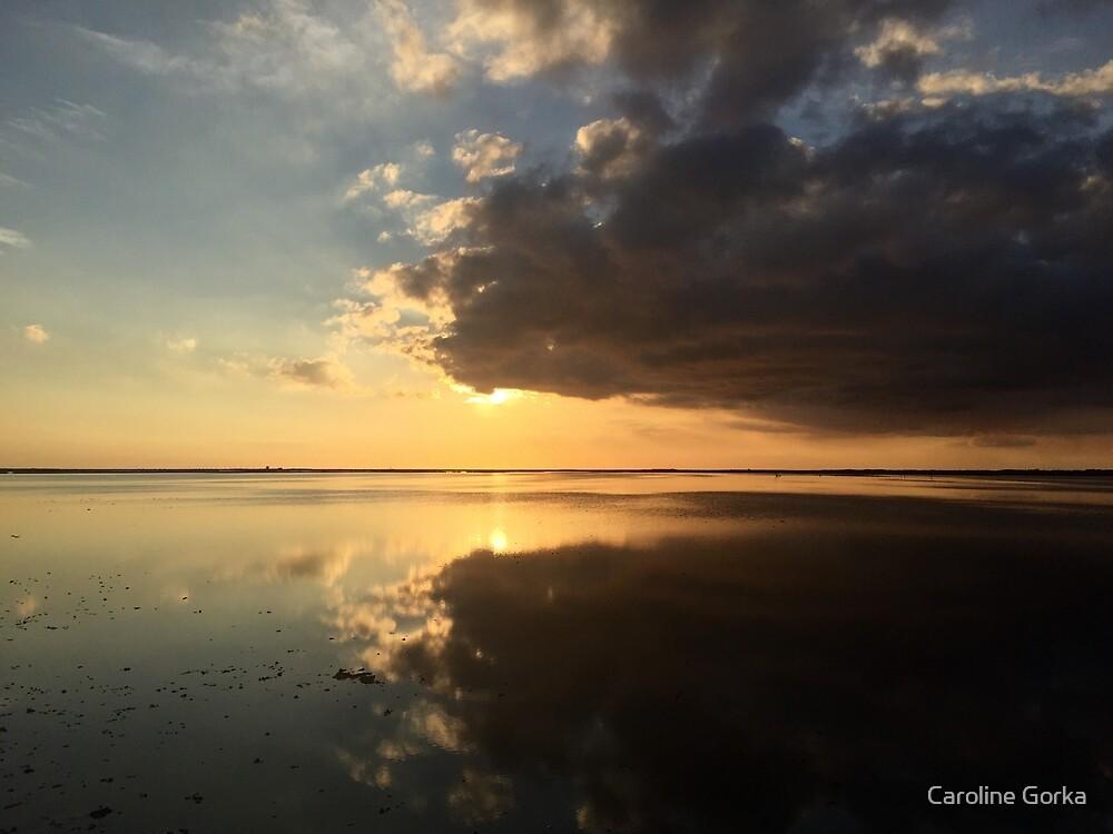 Camargue Sunset by Caroline Gorka