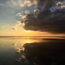 Camargue Sunset by Caroline Gorka