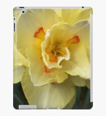 Yellow Orange Daffodil  If you like, purchase, try a cell phone cover thanks iPad Case/Skin