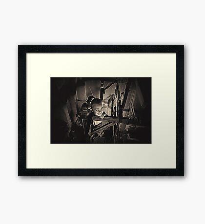 King of the Loom Framed Print