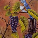 Bluey and the Grape Vine by Dan Wagner