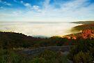 Sea of Mist Over Eardley Escarpment by Yannik Hay