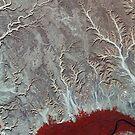 Egypt's Eastern Desert by flashman