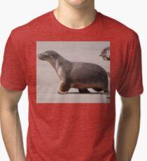 Sealion Cub Tri-blend T-Shirt