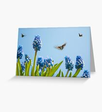Something in the air... Greeting Card