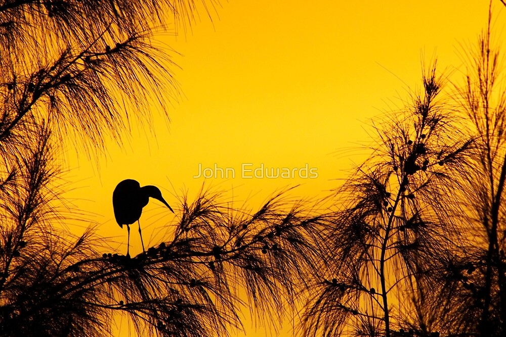 Day's End In Jamaica by John Edwards