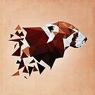 Red Panda II by frauargh