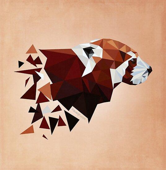 Red Panda II von frauargh