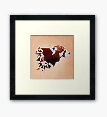 Red Panda II Gerahmtes Wandbild