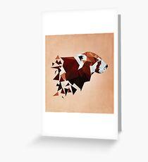 Red Panda II Grußkarte