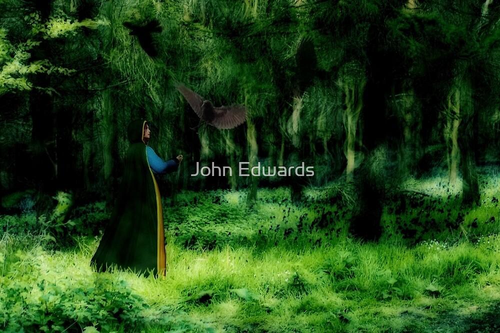Call to hand (Daylight) by John Edwards