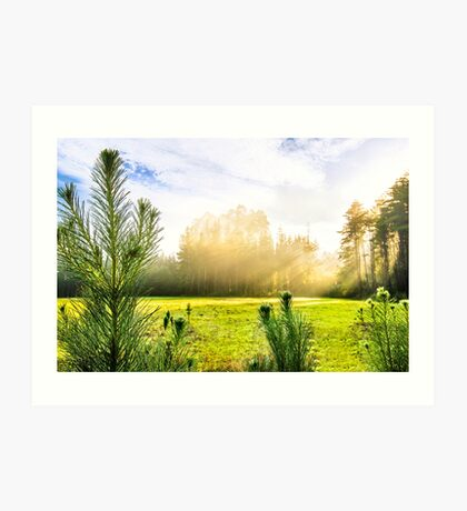 Early Morning Country Walk Art Print