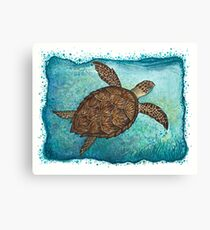 """Hawksbill Sea Turtle"" by Amber Marine ~ Watercolor painting, art © 2016 Canvas Print"