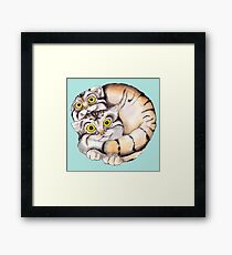 Cat Ball Friendship Framed Print