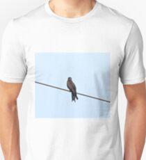 Yellow-billed Black Kite Unisex T-Shirt