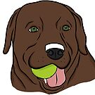Chocolate Lab with Ball  by rmcbuckeye