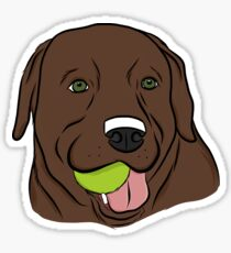 Chocolate Lab with Ball  Sticker