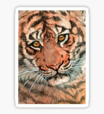 Tiger portrait 884 Sticker