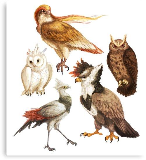 PokéBirds of Prey I by ommanyte