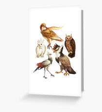PokéBirds of Prey I Greeting Card