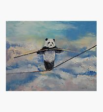 Panda Tightrope Photographic Print