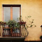 The Balcony by Lucinda Walter