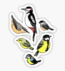 Six little birds Sticker
