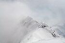Hidden summit by Marcel Ilie