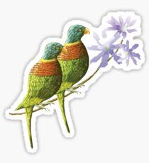 Rainbow lorikeet of Australia 4 Sticker