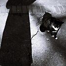 Shooting shadow by iamelmana